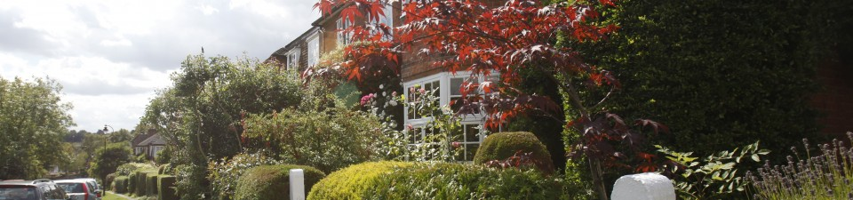 Homestay Accommodation in Muswell Hill