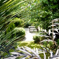 Our garden is a peaceful space away from the city