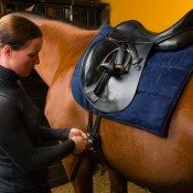 Horseriding Experience